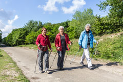 Senior nordic walkers in a park Stock Photo