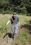 Senior nordic walking Stock Image