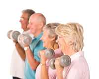 Senior older people lifting weights. Group of older senior people lifting weights in the gym Stock Image