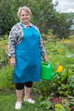 Senior pensioner woman with watering can Stock Images