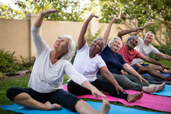 Senior people with arms raised exercising at park Royalty Free Stock Images