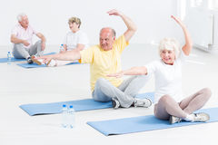 Senior people doing yoga exercises. Group of senior people sitting on exercising mats and doing yoga exercises Stock Image