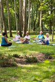 Senior people having yoga in a park Stock Image