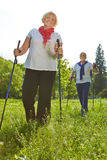 Senior people hiking in summer Stock Images
