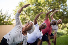 Senior people looking up while exercising with arms raised Stock Photos