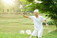Senior people practicing qigong in the park. Portrait of fitness white hair Asian senior man practicing martial arts at outdoor park in morning Royalty Free Stock Photo
