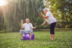 Senior people workout - man and woman doing together fitness exe. Senior people workout - Smiling men and women doing together fitness exercises on fitness ball Royalty Free Stock Photos