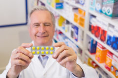 Senior pharmacist holding up blister packs Stock Image