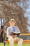 Senior reading a book in park on sunny day Royalty Free Stock Images