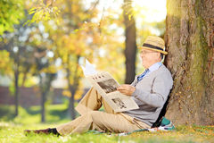 Senior reading a newspaper in a park at autumn. Senior gentleman seated on a grass reading a newspaper in a park at autumn Royalty Free Stock Photo