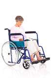 Senior reading wheelchair Stock Image