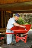 Senior and red wheelbarrow Royalty Free Stock Photos