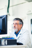 Senior researcher using a computer in the lab Royalty Free Stock Images