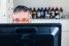 Senior researcher using a computer in the lab Royalty Free Stock Photos