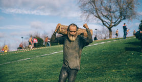 Senior runner carrying wooden logs in a test of extreme obstacle race Royalty Free Stock Image