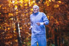 Senior runner in nature. Elderly sporty man running in forest during morning workout. stock photography