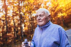 Senior runner in nature. Elderly sporty man running in forest during morning workout. stock image