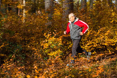 Senior running in the forest in autumn Royalty Free Stock Images