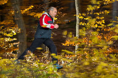 Senior running in the forest in autumn Royalty Free Stock Image