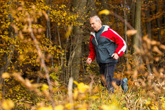 Senior running in the forest in autumn Stock Photography