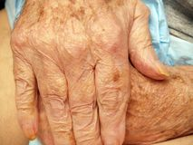Senior's hands Stock Photography