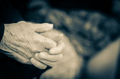 Senior's hands Stock Image