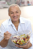 Senior salad. Stock Images