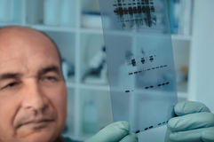 Senior scientist checks results of protein experiment Stock Photo