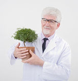 Senior scientist holding plant Stock Photo