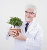 Senior scientist holding plant stock photo