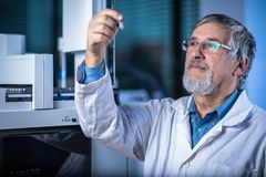 Free Senior Scientist In A Chemistry Lab Carrying Out Research - Looking At Gas Chromatography Samples Stock Image - 152120771