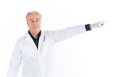 Senior scientist standing on white background. Stock Photos
