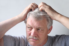 Senior scratches his head Royalty Free Stock Photo