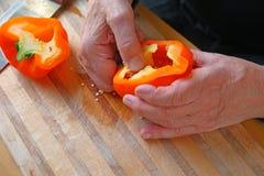 Senior seeding bell pepper Stock Photos