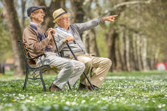 Senior showing something to his friend Stock Photos