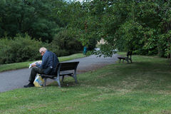 Senior sitting on a park bench reading a newspapers Royalty Free Stock Photos