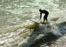 Surfing in the UK. A silver surfer takes to the real thing showing that you are never too old to try new things. Usages could be for health, fitness, activity Stock Photo