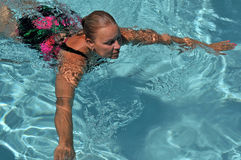 Senior Swimmer in the Pool. A senior lady swimmer in a suburban pool Stock Photo