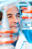 Senior scientist works in chemical lab Royalty Free Stock Image