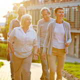 Senior travel group in city in summer Stock Image