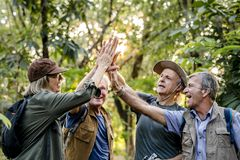 Senior trekkers giving a high five stock images