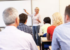 Senior tutor teaching class Royalty Free Stock Images