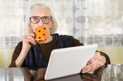 Senior using tablet device at home Royalty Free Stock Images