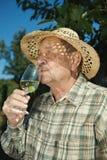 Senior vintner tasting wine. Outdoors in vinery Stock Image