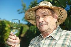 Senior vintner tasting wine. Outdoors in vinery Stock Photos