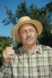 Senior vintner testing wine Stock Image
