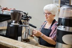 Senior Waitress Steaming Milk In Cafe Royalty Free Stock Photos