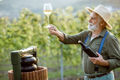 Free Senior Winemaker With Wineglass And Press Machine On The Vineyard Royalty Free Stock Photography - 163574757