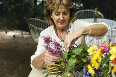 Senior woman arranging some flowers Stock Photography