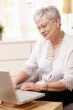 Senior woman browsing internet Royalty Free Stock Images